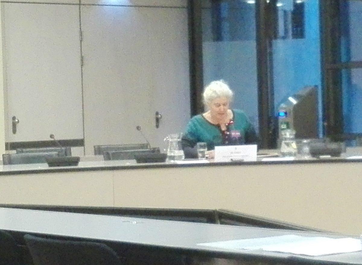 Dorpsraad Spaarndam over één Spaarndam bij de Tweede Kamercommissie voor BiZa